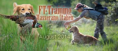 FT-TrainingAug14